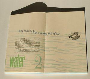 Rebecca Chamlee - A Reason of Water