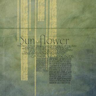 jan_owen.sunflower-1