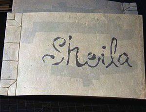 Shu-Ju Wang Sheila