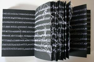 A-Silver-Codex-1