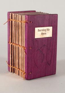 Alicia Bailey - Burning Me Open
