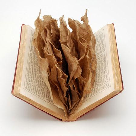 B-Hosein-Book-of-1