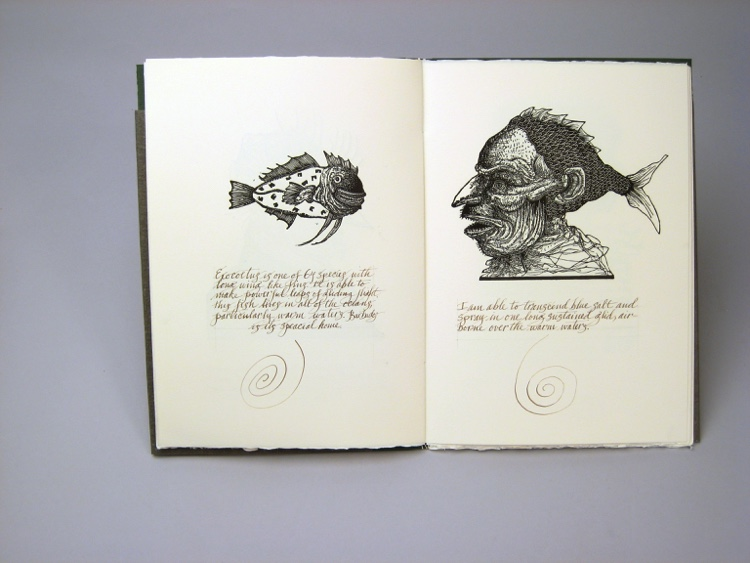 D-Moyer-The Naturalist-2