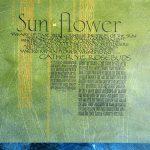 Jan Owen - Sunflower