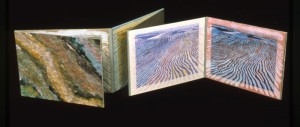 Lynn Sures - White Sands