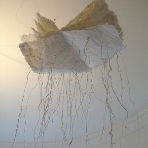 Mary Ellen Long Cloud Root Paper