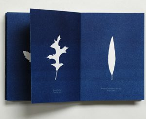 Michael Sharp Book of Leaves