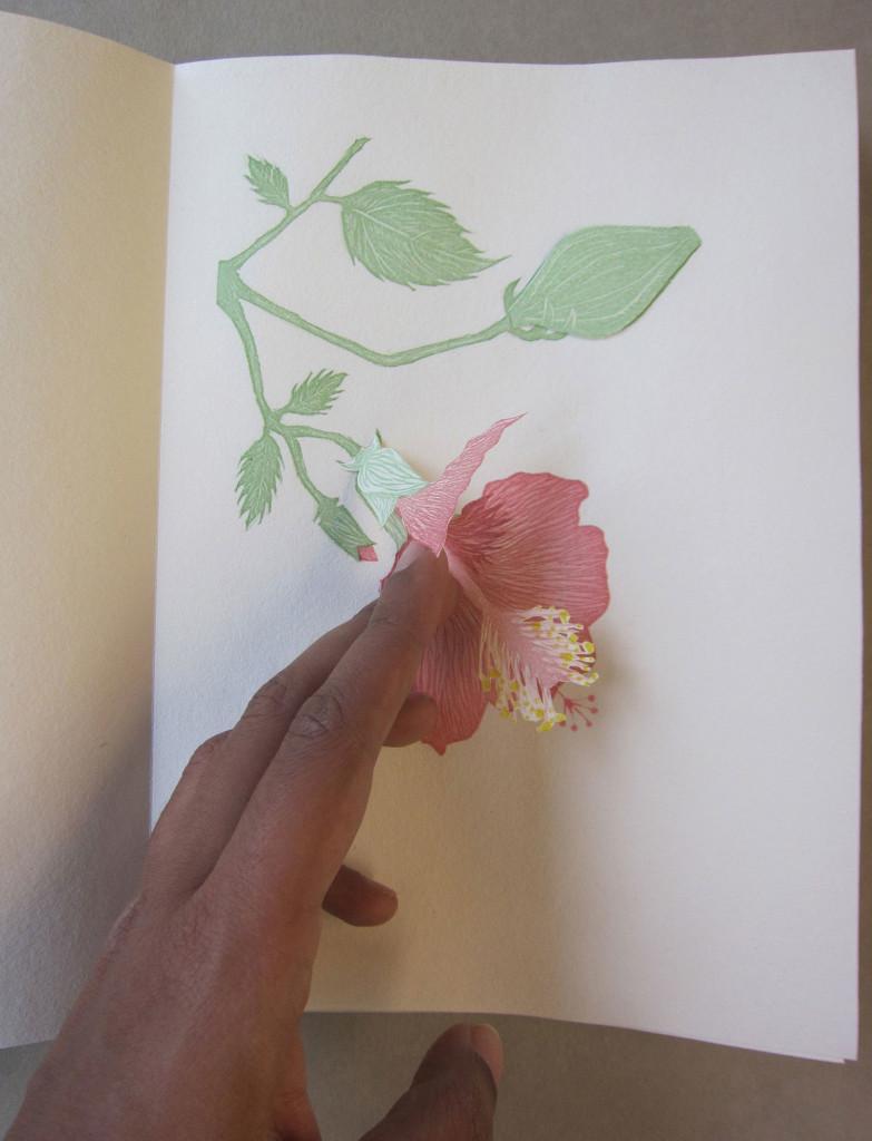 R-Pandey-Anatomia-Botanica-1