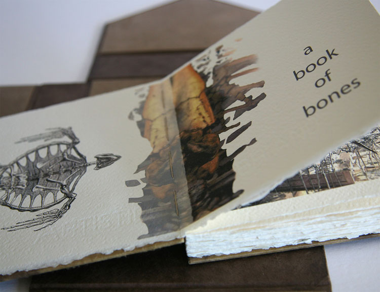 Servane Briand-Book of Bones 3