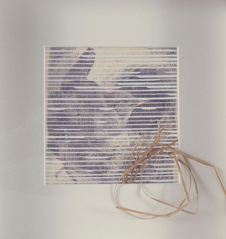 Vicki Essig – grasses (detail)