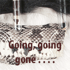 going, going, gone - last copy